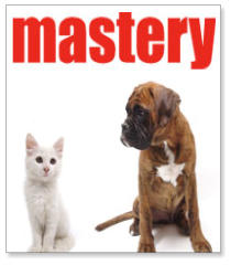 mastery_productos